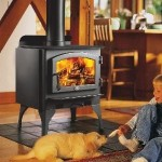 Image Result For In Wall Gas Fireplace Ventlessa